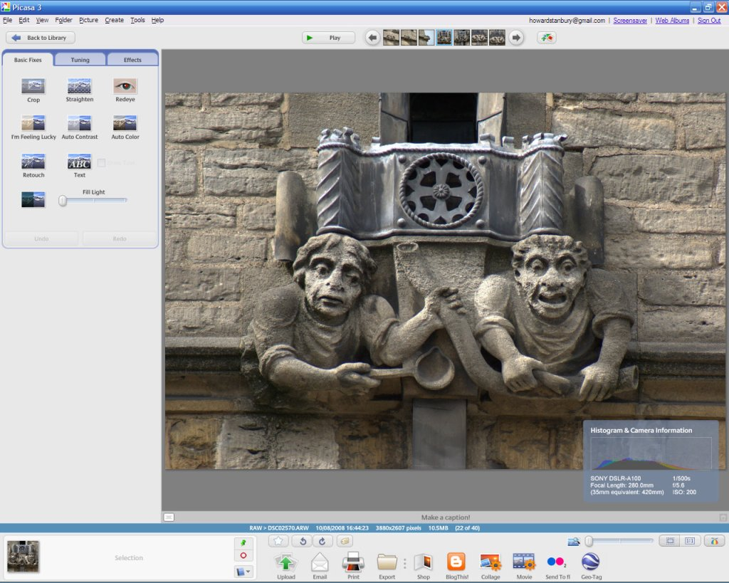 Picasa 3, showing RAW rendering and EXIF data